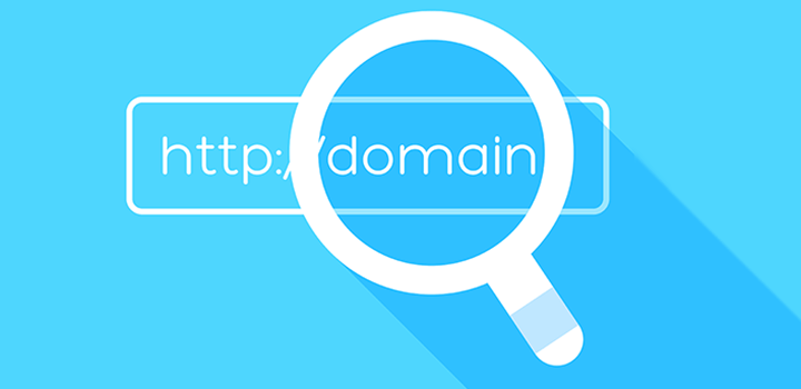 Find expired domain